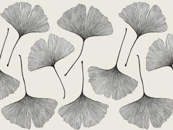 은행나무잎